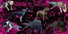 Circle M Kennels