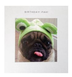 Pug birthday card at www.ilovepugs.co.uk post worldwide