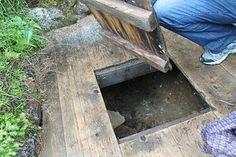 Olavskilden på Totenåsen - Foto: Ragnhild Moen Holø / NRK Texture, Wood, Surface Finish, Woodwind Instrument, Timber Wood, Trees, Pattern