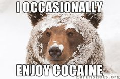 cocaine snowman | occasionally enjoy cocaine