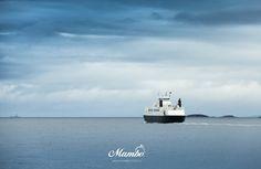 www.mambo.com.co crucero