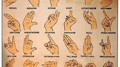 Hand Mudras, illustration of Indian dance- use as poster for students Hand Mudras, Hand Pose, Indian Classical Dance, Yoga School, Flow Arts, Tribal Belly Dance, Dance Poses, Vinyasa Yoga, Yoga Meditation