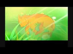 SSS Warrior Cats was a great series and I reccomend loversof the warrior cat series to see it if not already!