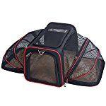 Petsfit 19x12x12 Inches Expandable Foldable Washable Travel Carriers Travel Pet Carrier Soft-sided Two Extension (Black)