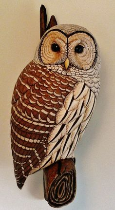 Barred Owl Life size wood carving by Tim McEachern www.natureswings.org: