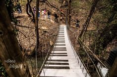 Railroad Tracks, Greece, Stairs, Destinations, Stairways, Ladder, Staircases, Travel Destinations, Grease