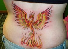 Phoenix Tattoo Picture. I want a Phoenix tat. I like this one. I think I'd want some greens and blues near the top and a longer tail between the flames.