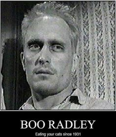 boo radley character traits Atticus finch is the most wise and moral character in the book to kill a  mockingbird  analysis: here scout is talking to atticus about how boo radley  turned out to be a very nice  this is one of the noblest qualities a person can  have.
