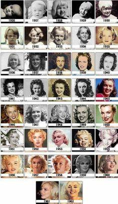 Marilyn Monroe ✾