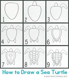 How to Draw a Sea Turtle Handout