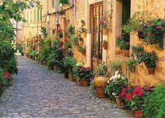 Street in Valldemossa, Mallorca