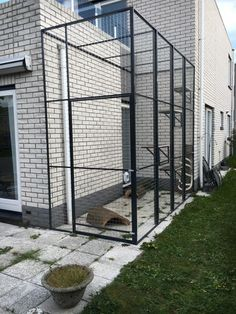 Diy Cat Shelves, Outdoor Cat Enclosure, Racing Pigeons, Cat Cages, Cat Room, Outdoor Cats, Building A Shed, Woodworking Projects Diy, Cat Furniture