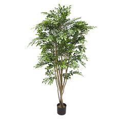 Artificial plant, 5.5' murraye tree
