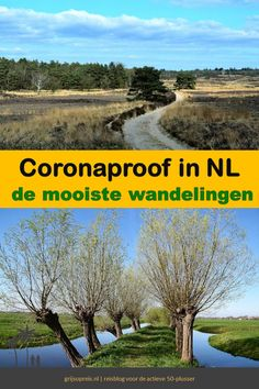 Walking In Sunshine, Holland, Weekender, Hiking Tips, Go Outside, Country Roads, The Good Place, Travel Inspiration, Beautiful Places