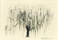 Weeping Willow Tree Drawing Aurora No 1 in Natural by theinklab on ...