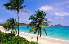 """Karibik: Kleine Antillen, Antigua, Half Moon Bay  <br> Grüne Hügel, weiße Strände und türkisfarbenes Wasser das ist Antigua. Der schönste Strand liegt in der """"Half Moon Bay"""" und gehört zweifelsohne zu den schönsten Orten auf den Kleinen Antillen. Die """"Inseln über dem Winde"""" wie die kleine Antillen auch genannt werden, sollten Reisende jedoch in der Zeit der Wirbelstürme von Juni bis November meiden. Beste Reisezeit ist von Mitte November bis April"""