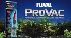 """Zusätzlich zum batteriebetriebenen """"Fluval AquaVAC+"""" und dem Außenfilter abhängigen """"GravelVAC"""", bietet Fluval mit dem neue """"ProVAC"""" auch eine kabelgebundenen Variante seiner Kiesreiniger an. Nebenbei wurde dem Reiniger auch eine LED Leuchte, sowie zweiGeschwindigkeitseinstellungen für leichten und schweren Bodengrund spendiert.  https://youtu.   #AquaVAC #Fluval #Kiesreiniger #ProVAC"""