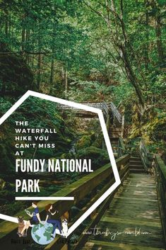 The waterfall you can't miss on any visit to Fundy National Park in New Brunswick, Canada. East Coast Canada, Mother Daughter Trip, Waterfall Hikes, Pine Forest, John Muir, New Brunswick, Weekend Trips, Hiking Trails, Vacation Spots