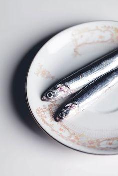 Pescheria San Pietro, Firenze  sardines