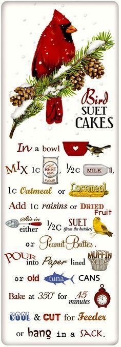 Suet Cakes for Birds Recipe 100% Cotton Flour Sack Dish Towel Tea Towel