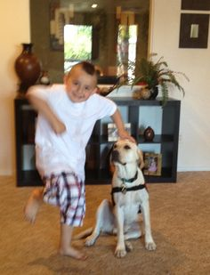 Autism Service Dogs often change the lives of the children they serve, in very profound and remarkable ways. It's not uncommon for families to report that they can finally enjoy outings as a family that were not possible before. Many children have dramatically reduced frequency and duration of meltdowns. And some parents finally get a good night's sleep. Here is one grandma's story./