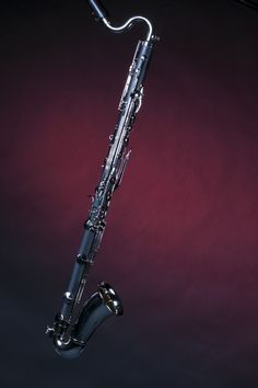 Bass Clarinet- the instrument I chose after my dad wouldn't let me play a regular clarinet because they sound terrible.  ;-)