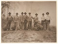 Residents and volunteers armed with green branches against bushfire, c. by Sam Hood by State Library of New South Wales collection. Terra Australis, Australian Photography, Mystery Of History, Historical Images, My Land, South Wales, Back In The Day, Cool Eyes, Vintage Images