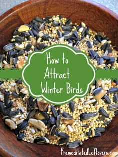 How to attract winter birds to your yard.
