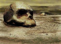 skull wallpaper desktop background imagem caveira9