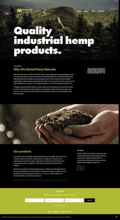 Bold, masculine and clean website design for Mesa Naturals by Karima Creative. The website uses dark tones, combining bold sans serif typography and contrasting bright green colour. Sweet Love Notes, Love Is Sweet, Web Themes, Website Themes, Green Theme, Graphic Design Inspiration, Web Inspiration, Brand Guidelines, You Are Awesome