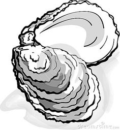 Oyster seafood shell clam  - illustration