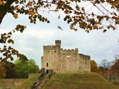 Cardiff Castle ►► http://www.castlesworldwide.net/castles-of-wales/cardiff/cardiff-castle.html?i=p
