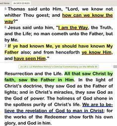 John is - Jesus is God John 6 35, True Vine, Begotten Son, The Good Shepherd, Light Of The World, Jesus Quotes, Lord, Bible, Sayings