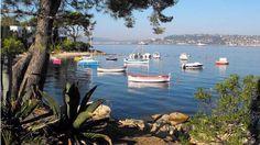 Maison de Vacances dans Juan-les-Pins Holiday rental in Antibes Juan les Pins Antibes, Juan Les Pins, Villa, River, Outdoor, Gardens, Hedgehog House, Outdoors, Outdoor Living