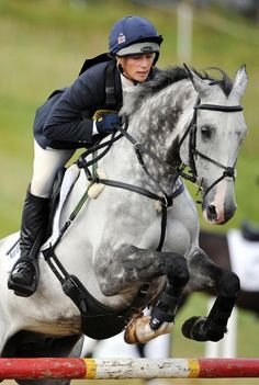 London 2012 Olympics: Queen Elizabeth's eldest granddaughter, Zara Phillips, will be representing Great Britain in the eventing at the London Olympics. Phillips, 31, will ride High Kingdom on her Olympic eventing debut, having missed Athens and Beijing because of injuries to previous horse Toytown.