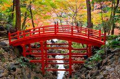 The vermilion-colored Tsutenkyo Bridge gracefully arches over a stream inside Koishikawa Korakuen Gardens, an Edo Period Japanese garden.