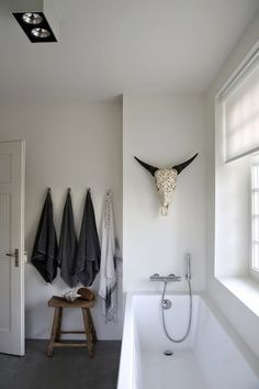 Cool decorated skull in the bathroom although a bit eery over the incredibly narrow, coffin-like tub.