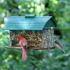 Luxury Deluxe Estación De Alimentación Aves silvestres jardín alimentador semillas de Mesa Bandeja de baño del pájaro