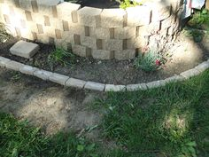Ground level bed in front of my raised bed.