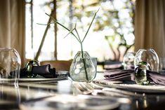 Kruger National Park, National Parks, Lodge Look, Park Landscape, Hotels And Resorts, Neutral Colors, Glass Vase, Restoration, Table Decorations