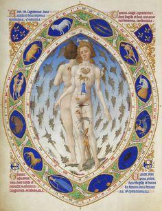 """Иллюстрация из Великолепного часослова герцога Беррийского, XV век - самая известная иллюстрированная рукопись XV в., начатая миниатюристами братьями Лимбургами в 1410-х гг.  """"Анатомический человек"""" - иллюстрация отображает связь знаков Зодиака с Гиппократовыми темпераментами в соответствии с «горячестью-холодностью» и «влажностью-сухостью» зодиакальных созвездий."""