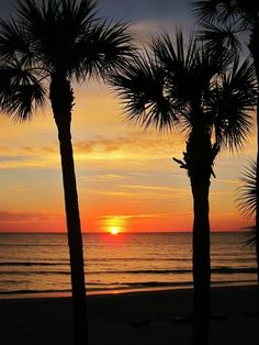10 Places to See Beautiful Sunset Around The World Beautiful Places To Visit, Beautiful Beaches, Places To See, Amazing Places, Clearwater Beach Florida, Florida Beaches, Florida Usa, Beach Honeymoon Destinations, Dream Vacations