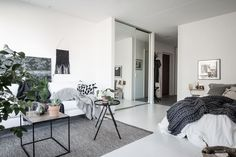 Scandinavian studio apartment