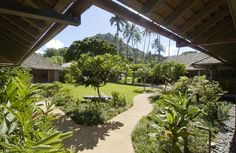 Lovely garden with walkway and bench under the Plumeria tree #Hawaii #Landscaping