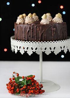 Čoko torta sa spekulasom, lešnicima i brusnicama / Chocolate ganache cake with speculaas, hazelnuts & cranberries