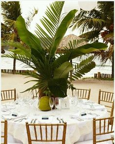 Really digging this tall centerpiece with flora and palm fronds. Using local and natural elements like coconuts and greens creates a tropical feel. #destinationwedding #destinationweddingplanner #tableacape #centerpiece #tropicalwedding #tropical #weddingreception #palmfrond #coconut #greencenterpiece #weddingbutlers #bride #beachbride #natrualwedding #organic #instawedding #igtravel