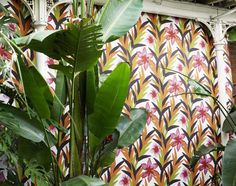 Jemima | Wallpaper from the 70s