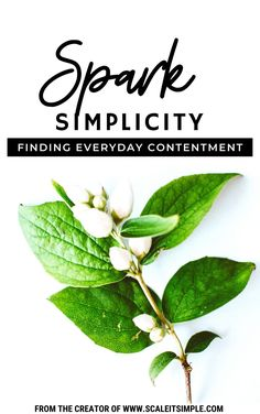 Unlock the secrets of everyday contentment with the help of this new ebook. Embrace simplicity and be happier today and everyday. Simple Living Blog, Simple Blog, How To Make Money, How To Become, Abundant Life, Meaningful Life, Best Blogs, Thoughts And Feelings, Self Development