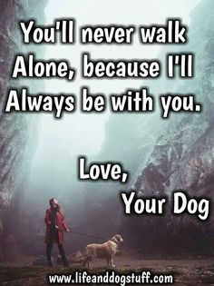 35 of the Most Beautiful Dog Quotes and Sayings - Funny Dog Quotes - dog quotes love and loyalty you'll never walk alone. The post 35 of the Most Beautiful Dog Quotes and Sayings appeared first on Gag Dad. Cute Dog Quotes, Puppy Quotes, Animal Quotes, Dog Sayings, I Love Dogs, Cute Dogs, Pet Sitter, Most Beautiful Dogs, Amazing Dogs
