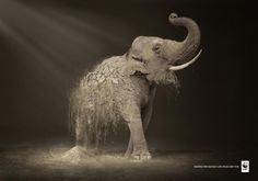 WWF Desertification: Elephant by Contrapunto BBDO Animals in Print Ads Creative Advertising, Print Advertising, Advertising Campaign, Print Ads, Social Campaign, Advertising Ideas, Advertisement Examples, Digital Art Illustration, Plakat Design